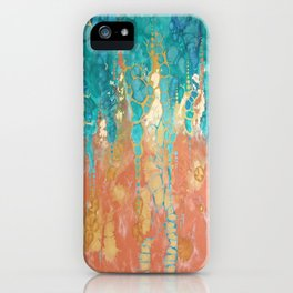 Coexistence  iPhone Case