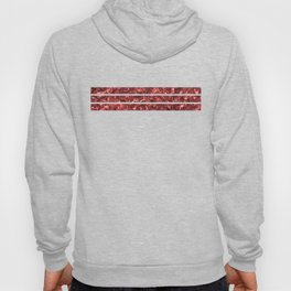 Abalone Shell | Paua Shell | Sea Shells | Patterns in Nature | Red Tint | Hoody