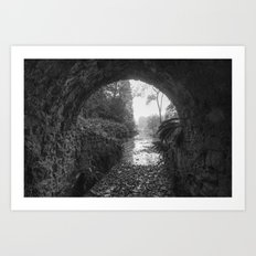 Out into the Light Art Print