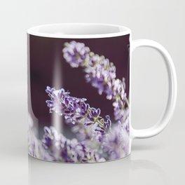 Lavande Coffee Mug