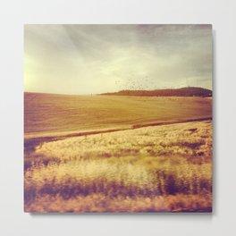 Palouse Drive Bys. Metal Print