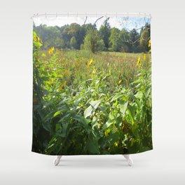 Harvard Arboretum Shower Curtain