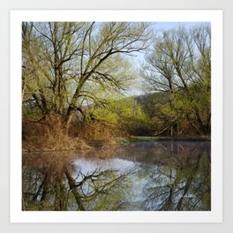 Botanical Reflection Landscape Art Print