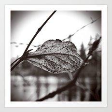 Lakeside leaf Art Print