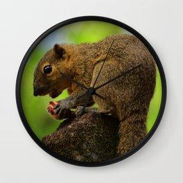 Squirrel Scavenger I Wall Clock