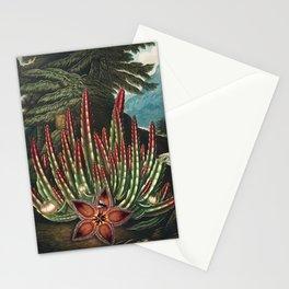 Robert John Thornton - The Maggot–Bearing Stapelia Stationery Cards