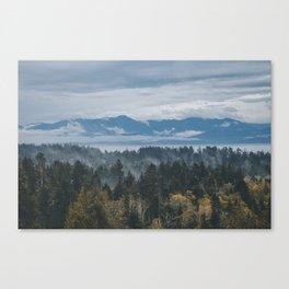 Olympic Peninsula Canvas Print