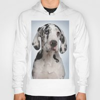 great dane Hoodies featuring Great dane by Life on White Creative