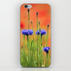 Sapphires and Rubies iPhone & iPod Skin