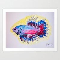Blue & Red Crowntail Betta Art Print