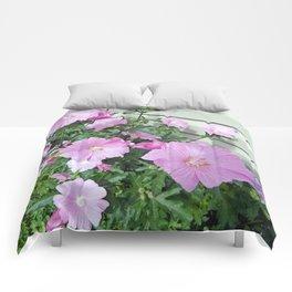 Pink Musk Mallow Bush in Bloom Comforters
