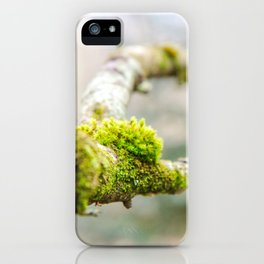 Branch in the Fall iPhone Case