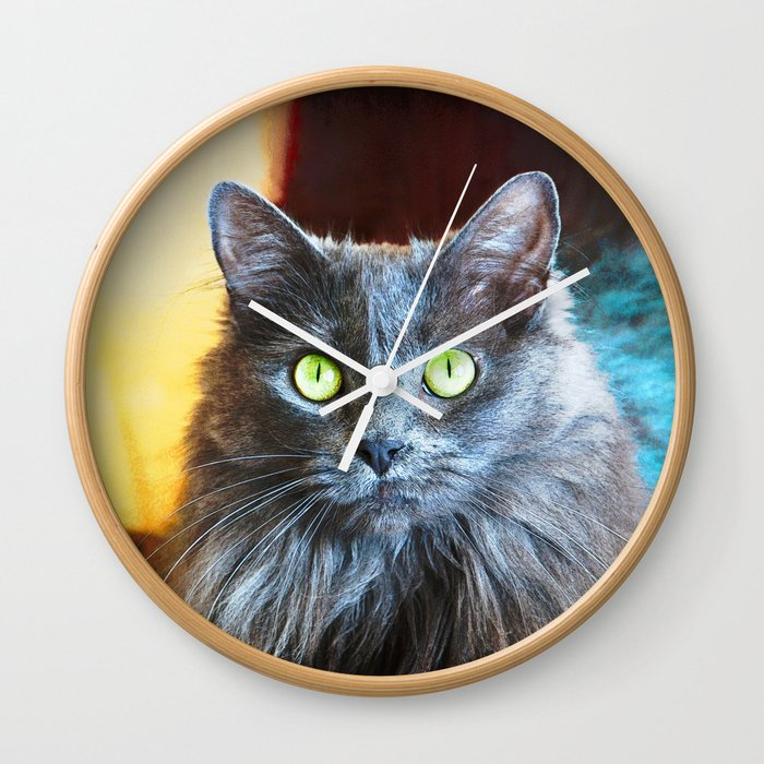 You Had Me At Meow Grey Cat Close Up Photo Wall Clock By Luceworks