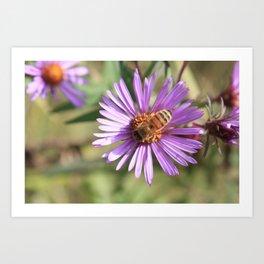 Happy Honey Bee Art Print