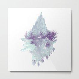 Desert Crystals Metal Print