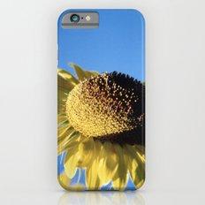 Bulging Sunflower iPhone 6s Slim Case