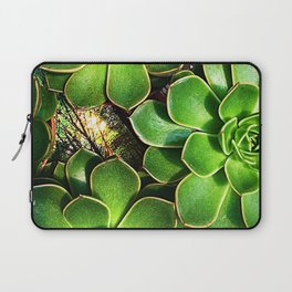 3 Succulents Laptop Sleeve