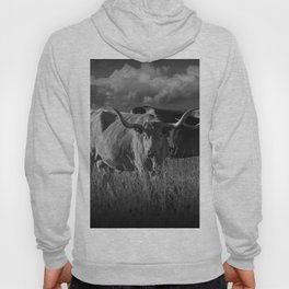 Texas Longhorn Steers under a Cloudy Sky in Black & White Hoody