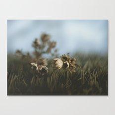 paper sky I Canvas Print