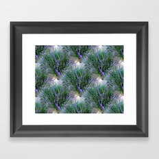 Patches of Lavender Framed Art Print