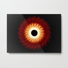Espiral natural Metal Print
