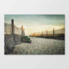 Beach Roses Canvas Print