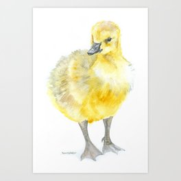 Baby Gosling Goose Watercolor Art Print