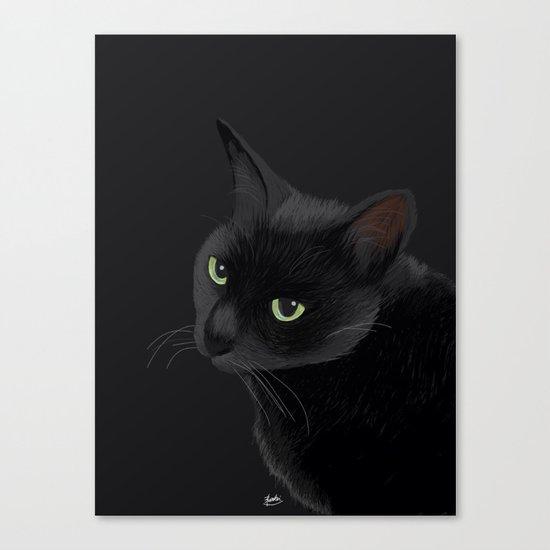 Black cat in the dark Canvas Print