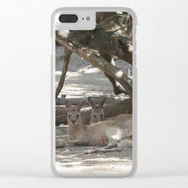 Kangaroos resting Clear iPhone Case