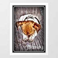 marley Art Prints featuring Marley by elkart51