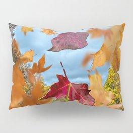 Winds of Change Pillow Sham