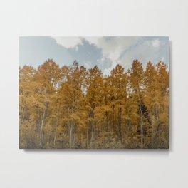 Autumns Song Metal Print