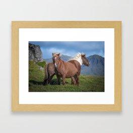 Icelandic Horses 2 Framed Art Print