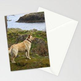 Nature Dog! Stationery Cards