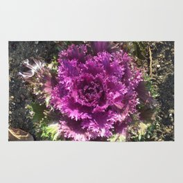 Getty Villa Garden Malibu  Purple Plant Rug
