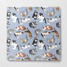 Lounging Cats in Blue Metal Print