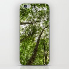 Nature Reaching For The Sky iPhone & iPod Skin