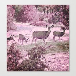 Bubble Gum Deer Canvas Print