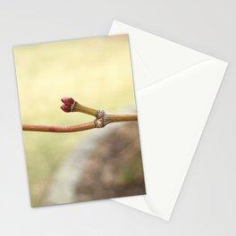 Japanese maple (Acer palmatum) leaf bud Stationery Cards