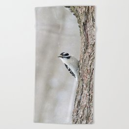 Wintertime Downy Woodpecker Beach Towel