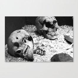 Aztec Skull 2 Canvas Print