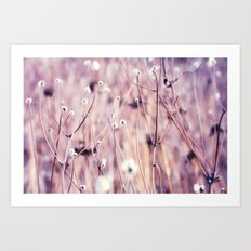 Flower field Art Print