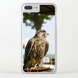 Falcon. Clear iPhone Case