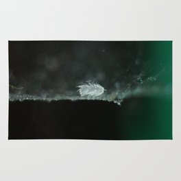 feather on spider web Rug