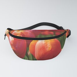 Tulip Time Fanny Pack