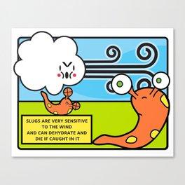 Facts You Should Know: Slugs Canvas Print