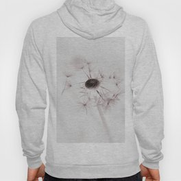 Dandelion Dream Hoody