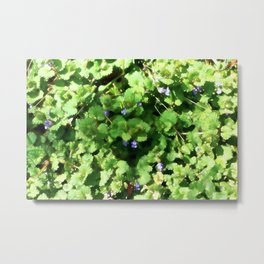 Ground Ivy 04 Metal Print