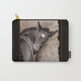 Black Foal Scratching  Carry-All Pouch