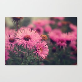 telling you stories about a land far away Canvas Print